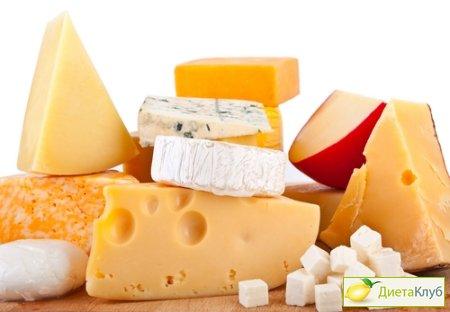 сыр, сыр польза