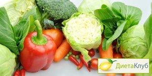 герберт шелтон ортотрофия основы правильного питания скачать