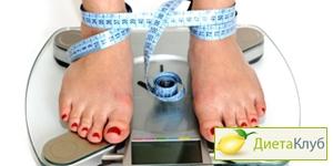 Какие весы выбрать
