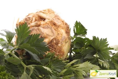 корень сельдерея для похудения, отзывы